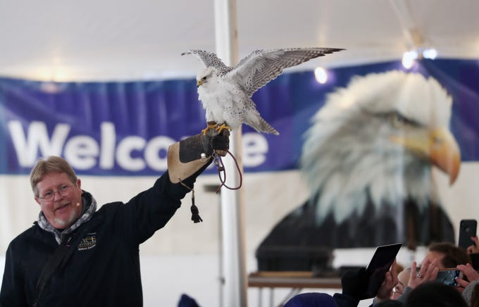 Master Falconer James Eyring shows off his falcon named Elvis, during the annual Hudson River Eaglefest at Croton Point Park Feb. 9,  2019.