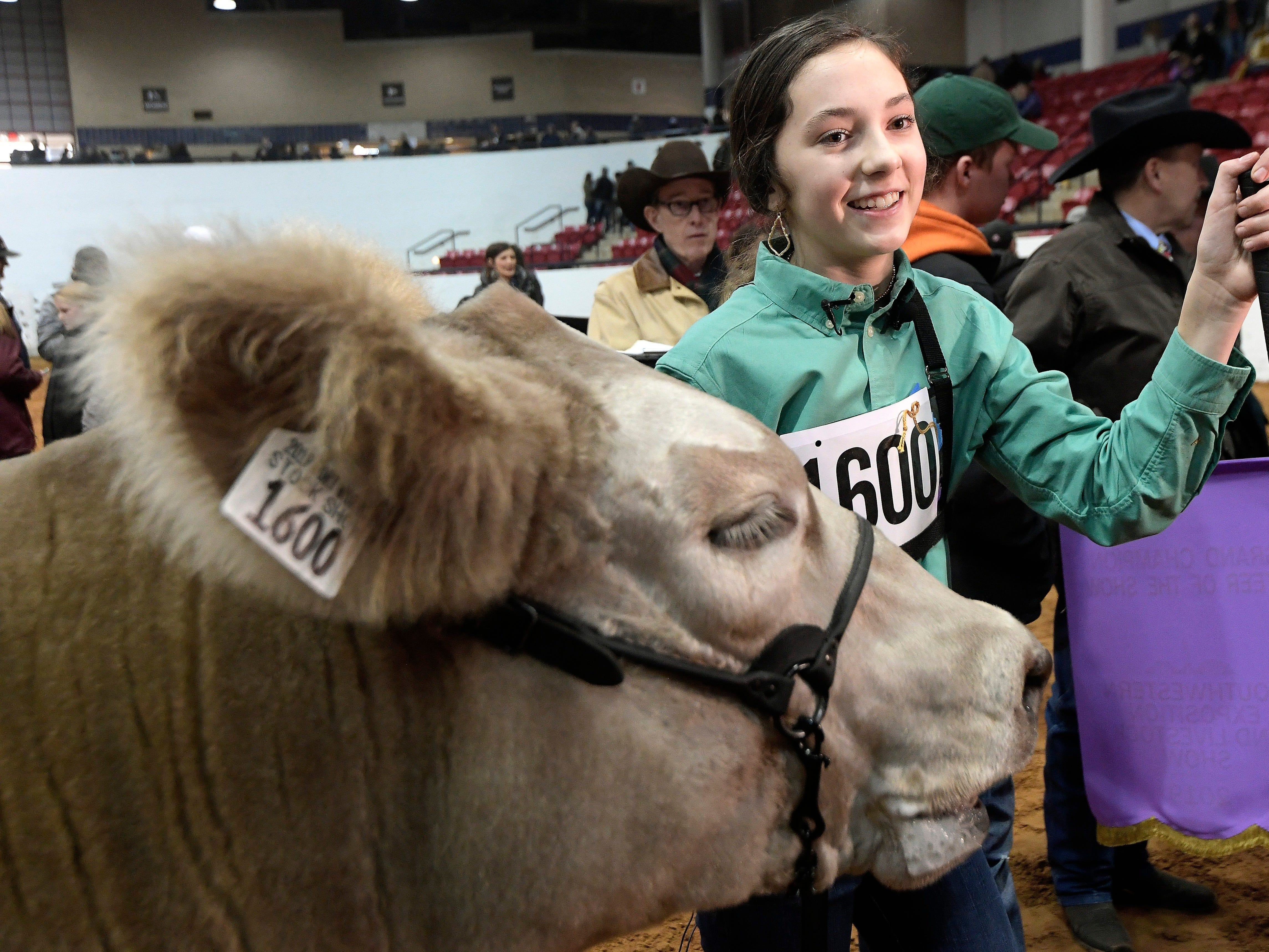 Aven Horn stands with her steer Bentley during the Grand Champion steer round of the Stock Show at Will Rogers Memorial Center in Fort Worth, Texas, Friday, Feb. 8, 2019. Bentley was named Grand Champion steer.