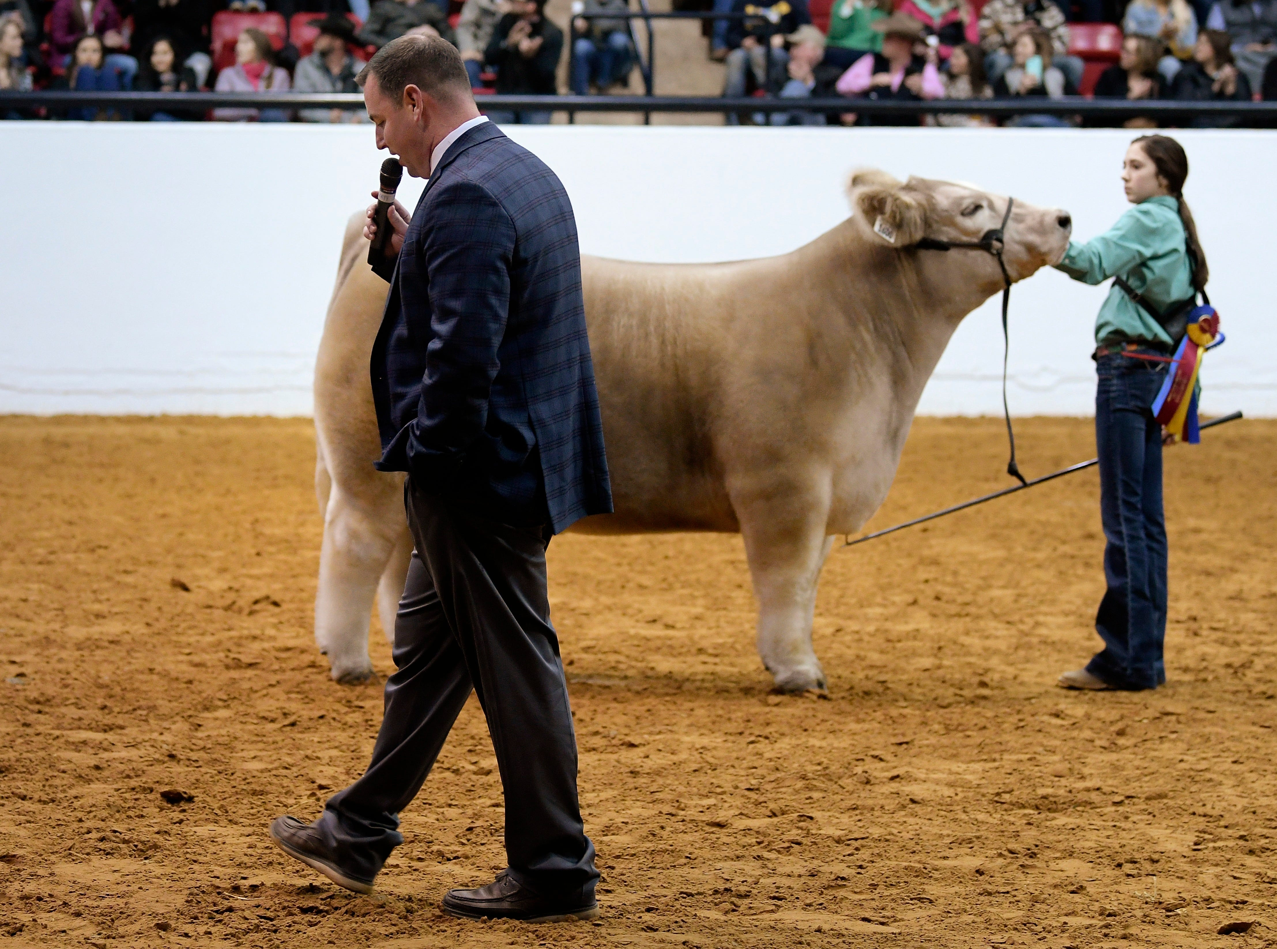 Aven Horn, right, shows her steer Bentley to judge Chris Mullinix during the Grand Champion steer round of the Stock Show at Will Rogers Memorial Center in Fort Worth, TX, Friday, Feb. 8, 2019. Bentley was named Grand Champion steer.