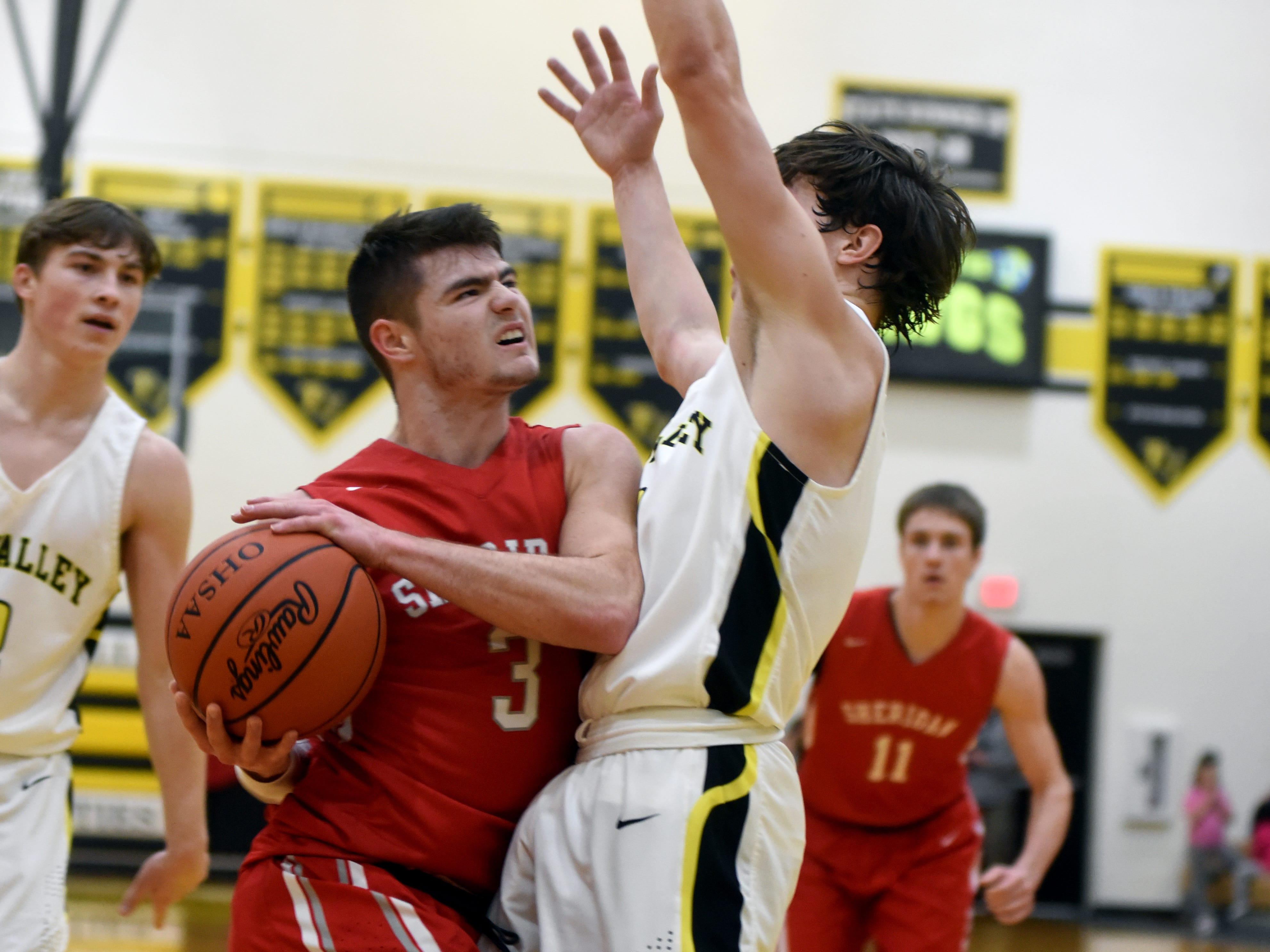 Ethan Heller, of Sheridan, draws contact from Tri-Valley's Matt King on a drive into the lane on Friday night in Dresden.
