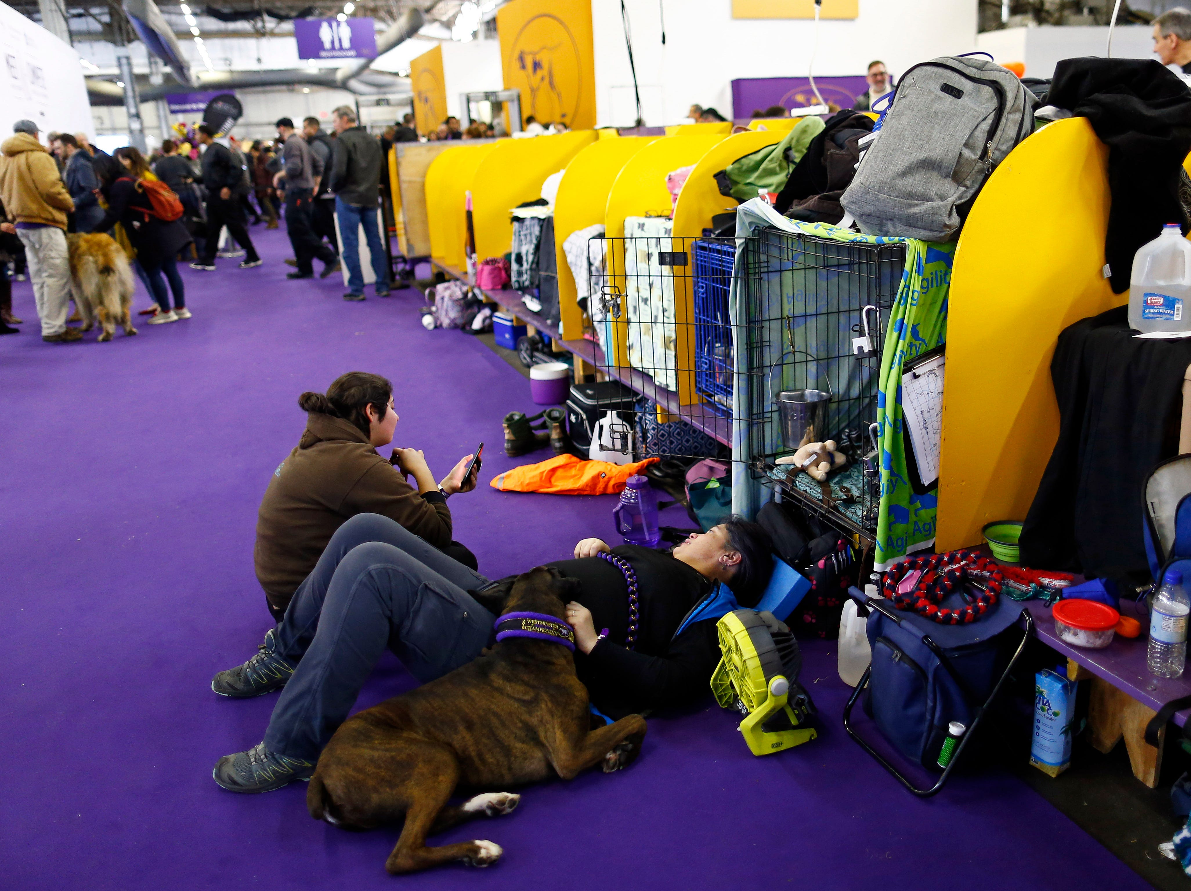 Nina Daniel lays with Jack_Daniel_Boxer during the meet the breeds at the 143rd Annual Westminster Kennel Club Dog Show.