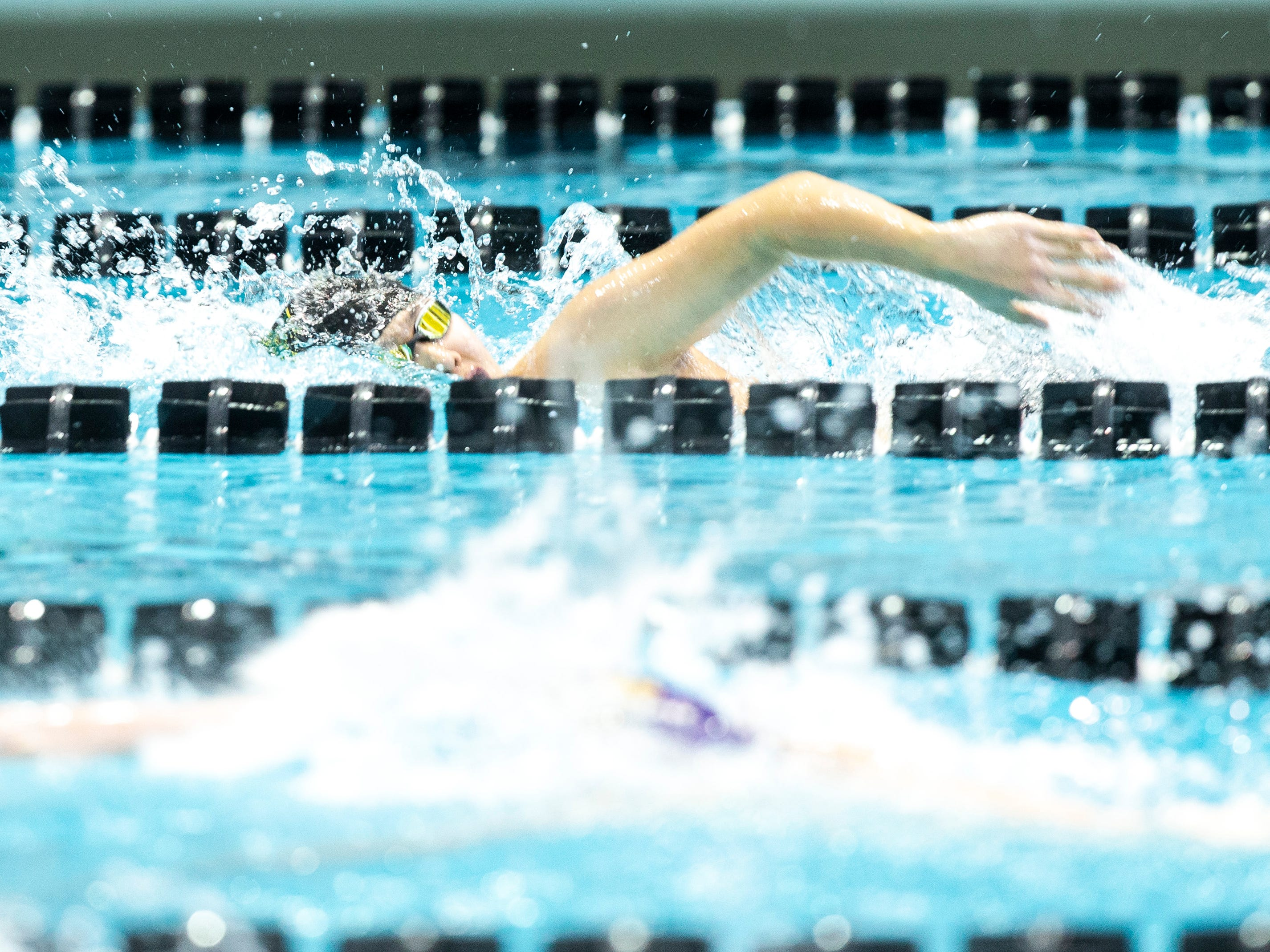 Iowa City West junior Michael Kimball competes in the 100 yard freestyle during the Iowa boys' state swimming regional championship meet on Saturday, Feb. 9, 2019 at Campus Recreation and Wellness Center on the University of Iowa campus in Iowa City, Iowa. Kimball finished 20th overall, with a time of 48.48.