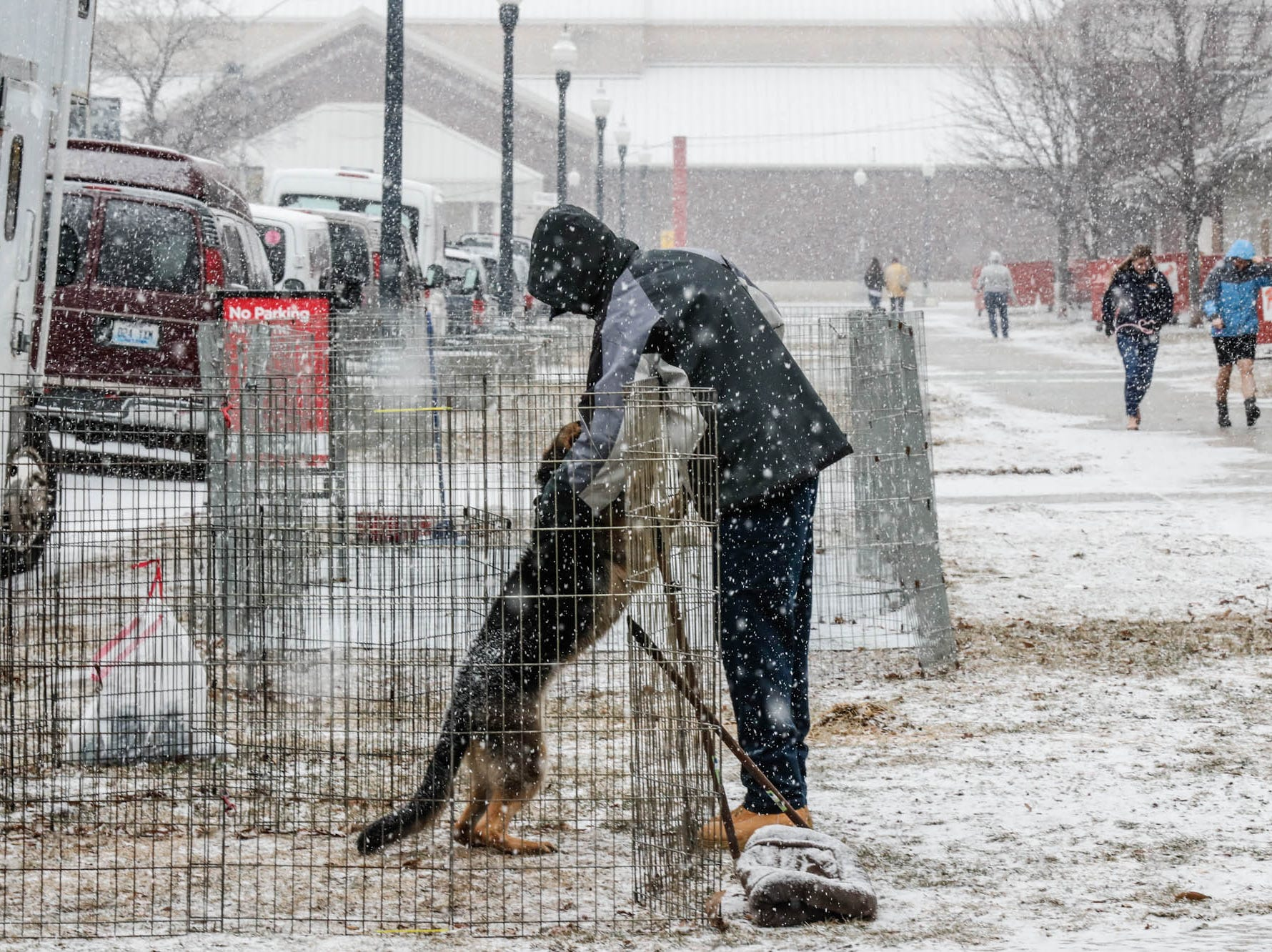 Chyna, a German Shepherd puppy plays in the snow with a visitor during the Indy Winter Classic All Breed Dog Show, held at the Indiana State Fairgrounds on Sunday, Feb. 10, 2019.
