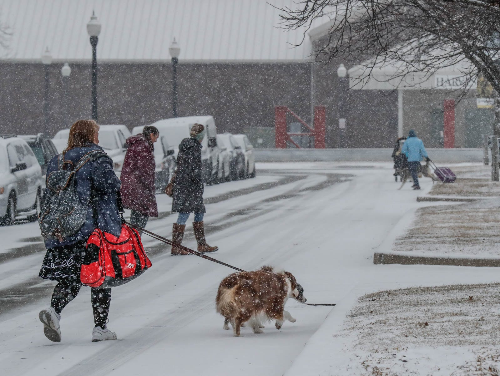 Pet parents walk their dogs outside the Indy Winter Classic All Breed Dog Show at the Indiana State Fairgrounds on Sunday, Feb. 10, 2019.
