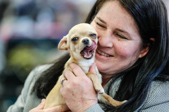 Indy Winter Classic Dog Show: The coolest and cutest stuff