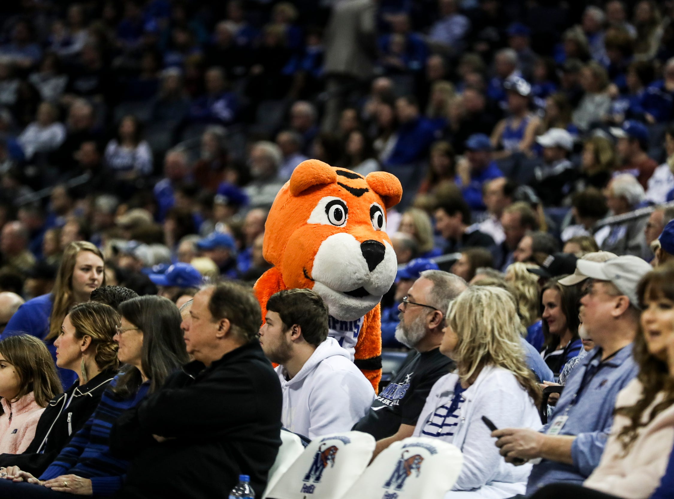 February 10, 2019 - Pouncer is seen during Sunday's game versus Connecticut at the FedExForum.