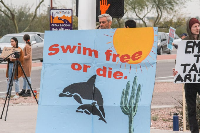 Chris Fleischman holds a sign during a demonstration in Scottsdale. Arizona on Saturday, Feb. 9, 2019, to protest Dolphinaris after four of eight dolphins died at the facility.