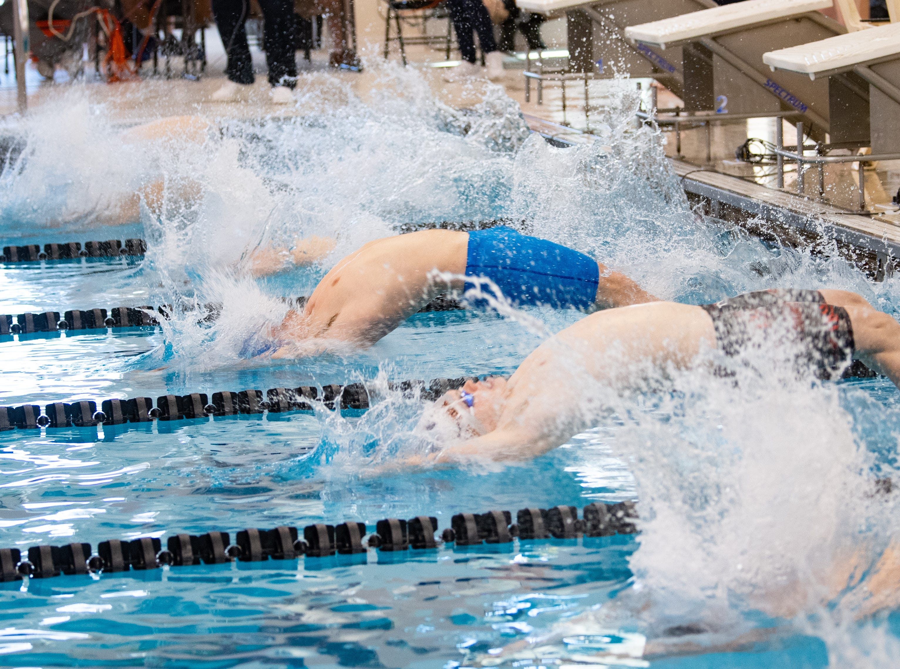 Swimmers start the Boys 100 Yard Backstroke during the 2019 YAIAA Swimming and Diving Championships at Central York High School, February 9, 2019.