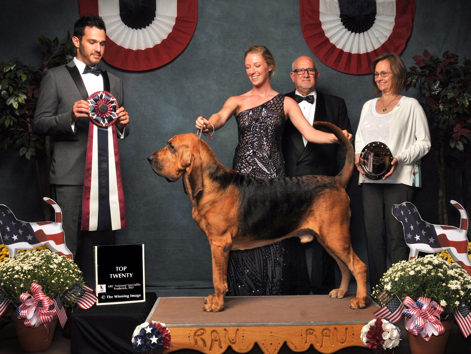 Owen, a bloodhound owned by Rick and Stacie Shriver of Bear, strikes a pose with his professional handler, Morgan Mattioli, at the Bloodhound National Top Twenty event in Frederick, Maryland, in September 2018.