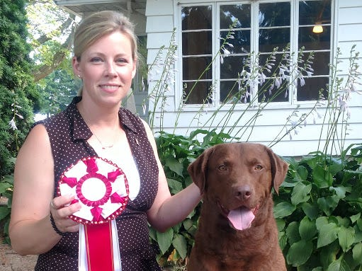 Trio, a Chesapeake Bay retriever owned by Chris and Karen Beste of Wilmington, will compete in the 2019 Westminster Kennel Club Dog Show in New York. He is shown with handler Angela Lloyd. Trio was the No. 1 male Chesapeake Bay retriever in breed in the country for the 2018 season.