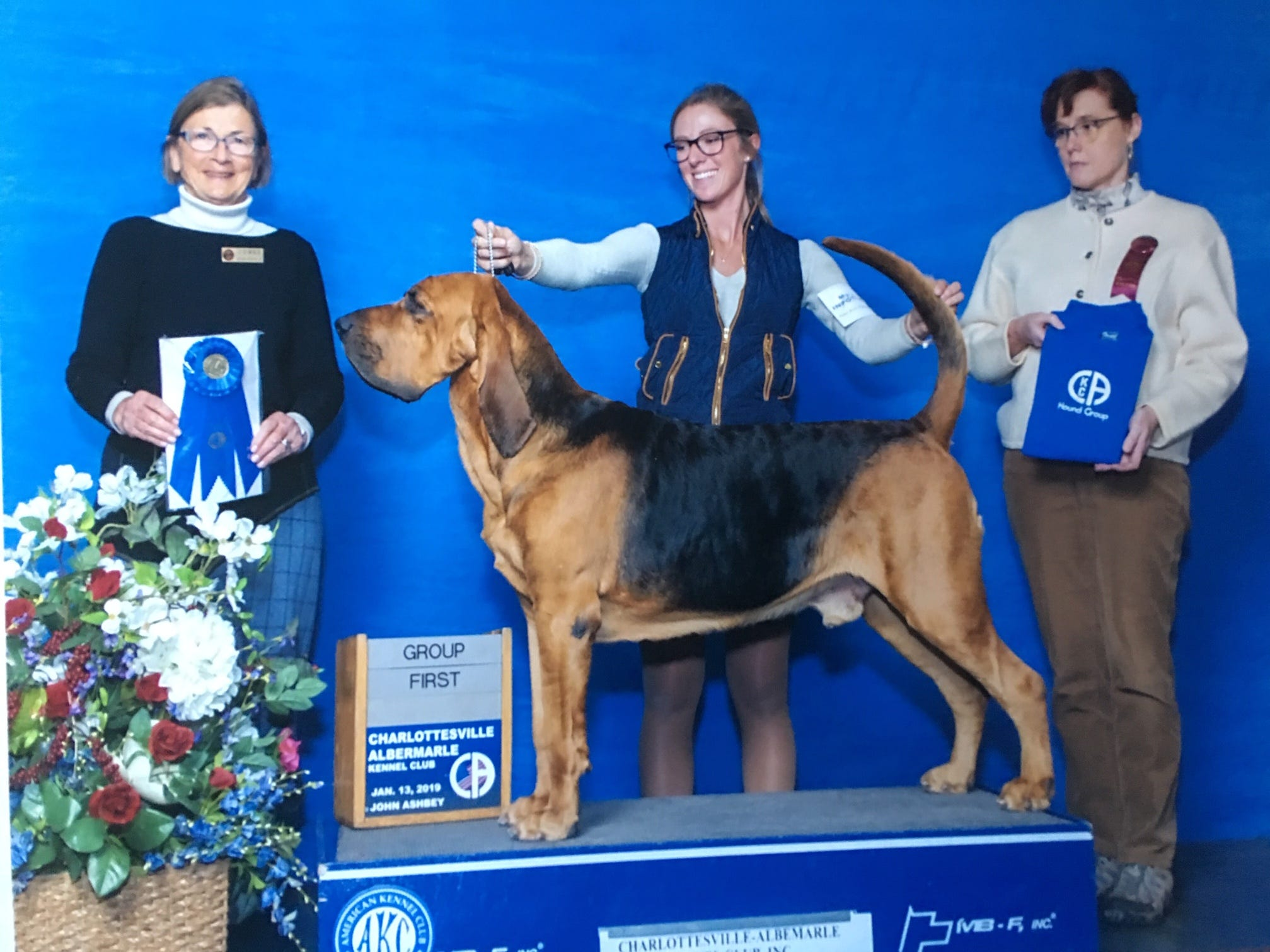 Owen, a bloodhound owned by Rick and Stacie Shriver of Bear, won the Hound Group competition and competed in the Best in Show category in Fredericksburg, Va., in January 2019.