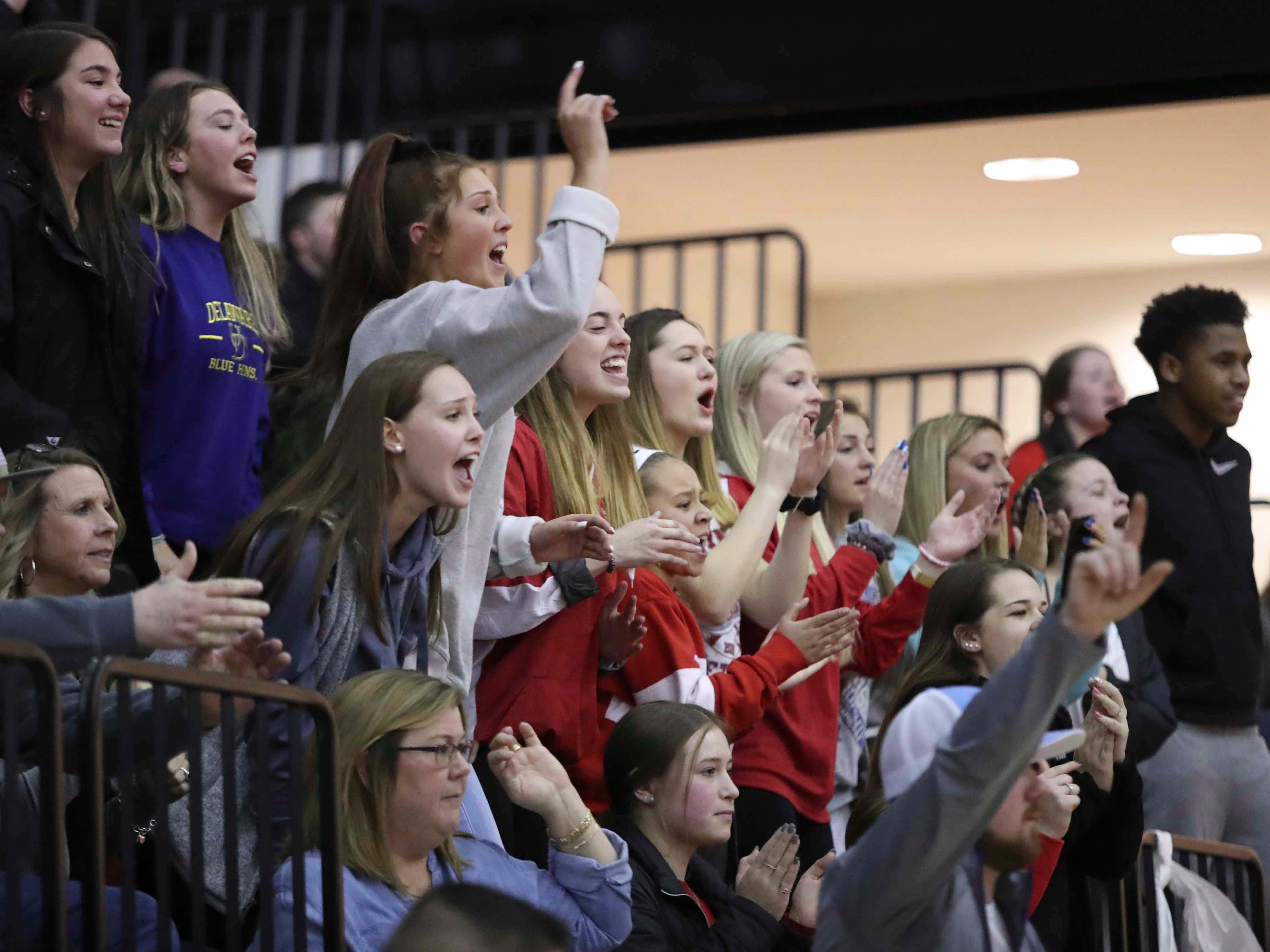 Smyrna student fans cheer in the 120 pound match won by classmate Joseph Natarcola in the DIAA dual meet championships Saturday at Smyrna High School.