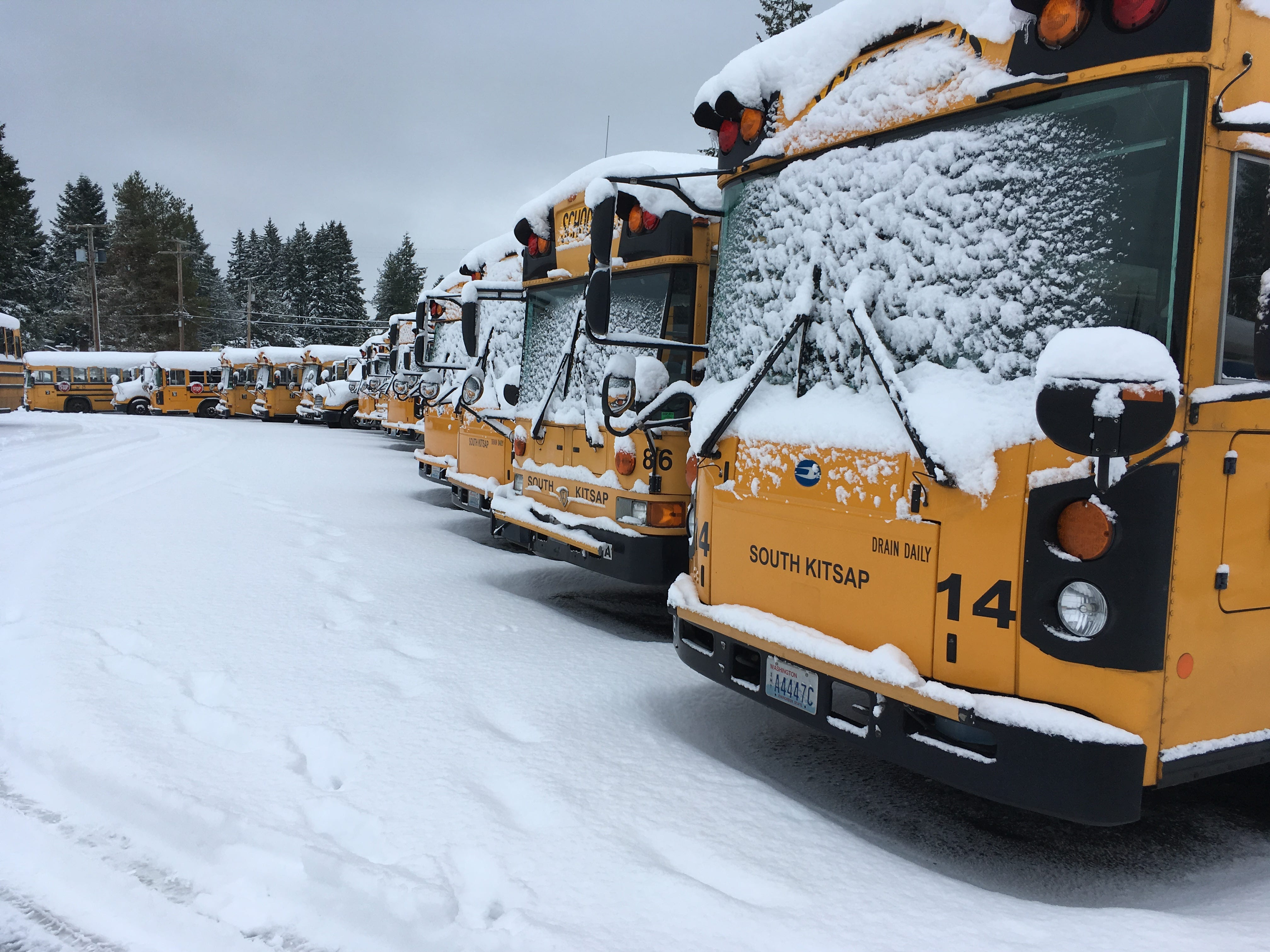 Buses in South Kitsap School District's bus barn stood idle on Monday, Feb. 11, 2019, following back to back snow storms over the weekend. All schools in Kitsap and North Mason counties were cancelled.