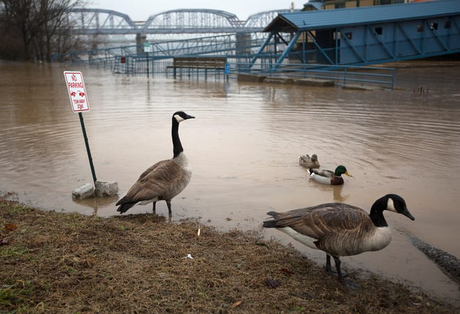 The Ohio River is rising and could reach 56.3 feet by week's end. Restaurants along Riverboat Row in Newport are closed due to high water.