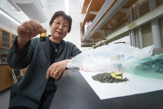 A chemical conversion process developed at Purdue University allows researchers to turn recycled shopping bags into pellets into oil as shown in the bottle being held by Linda Wang, the Maxine Spencer Nichols Professor in the Davidson School of Chemical Engineering. Using distillation, that oil is separated into a gasoline-like fuel in the bottle in the counter and a diesel-like fuel not shown.