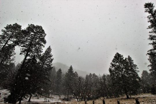 Snowfall also hit Cedar Creek Road.