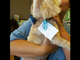 """When Lilly Smartelli picked up her dog Bernie from the groomer, he wearing a sequined blue bow tie. Attached to a blue ribbon on his collar was a plastic wedding band and engagement ring and a note that said, """"Marry me."""""""