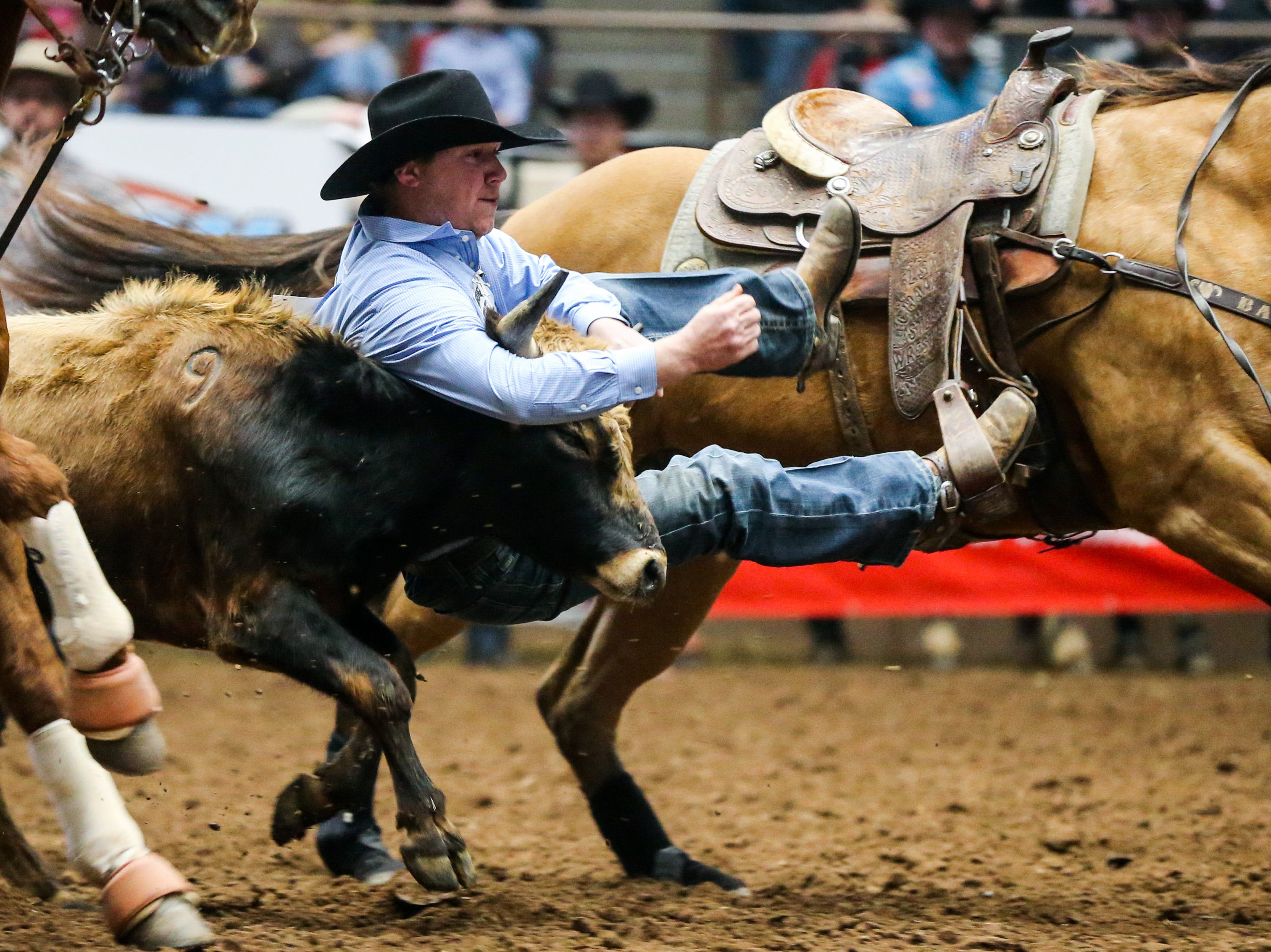 Heath Thomas rides out to steer wrestle during the San Angelo Stock Show & Rodeo matinee show Sunday, Feb. 10, 2019, at Foster Communications Coliseum.