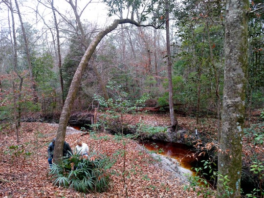 The Friends of Lost Creek have several events planned for spring.