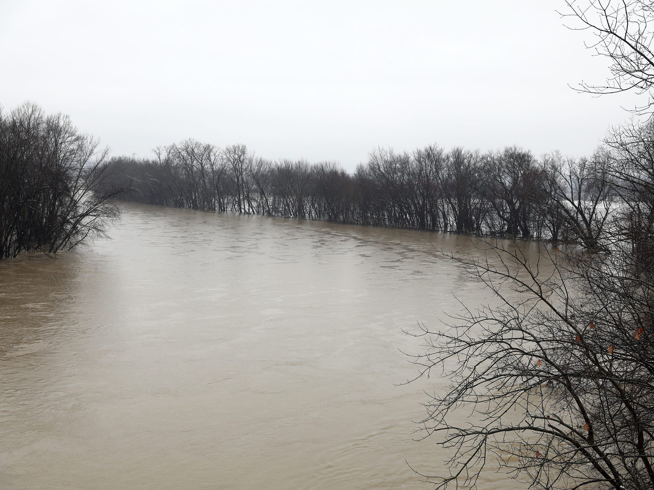 The Muskingum River has risen into the woods near the Dresden Suspension Bridge on Monday.