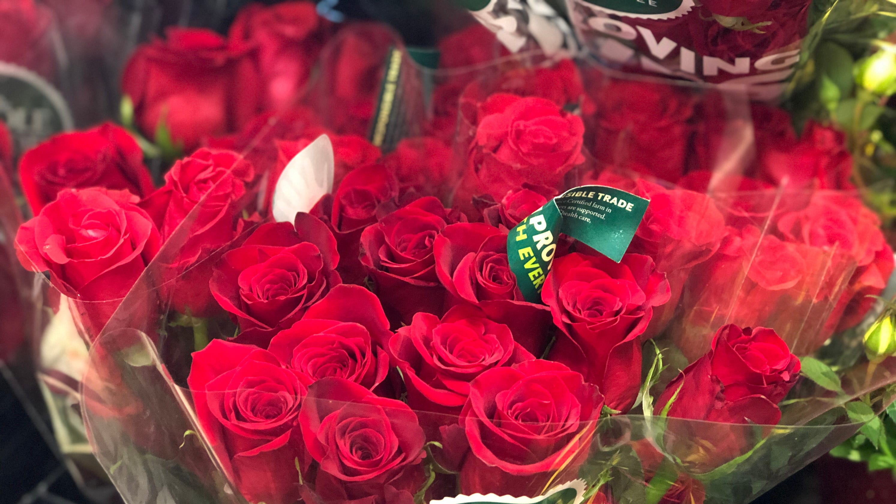 Valentines Day At Trader Rose >> Whole Foods Roses Low Prices Valentine S Day