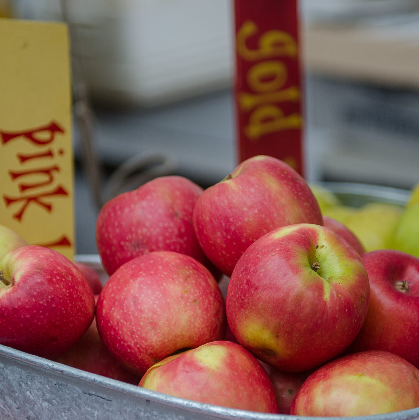 Tailgate Market Report: Shop for apples during winter