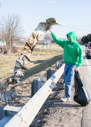 Senior Scott Pontious retrieves a ten-foot piece of scrap metal left on the side of OH-772 outside of Huntington High School that could have caused harm to local wildlife and people walking the highway Saturday morning.