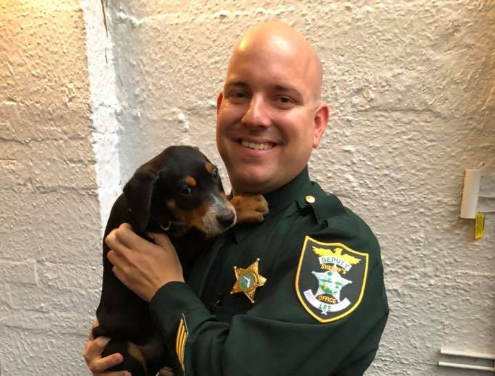 Lee County Sheriff's Office Deputy Brett Hawkins hoists a pup at the annual Cannolis, Cops & Canines event Monday sponsored by Bruno's of Brooklyn, Italian Eatery and Gulf Coast Humane Society.