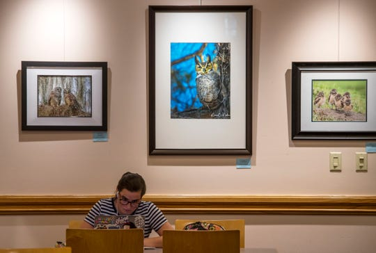 "Gabrielle Kesecker, of Cape Coral, works on her art portfolio at the Cape Coral Library on Monday morning.  An art exhibit entitled ""Birds of Different Feathers""  four photographers who call themselves the French Connection is currently on the display at the library."