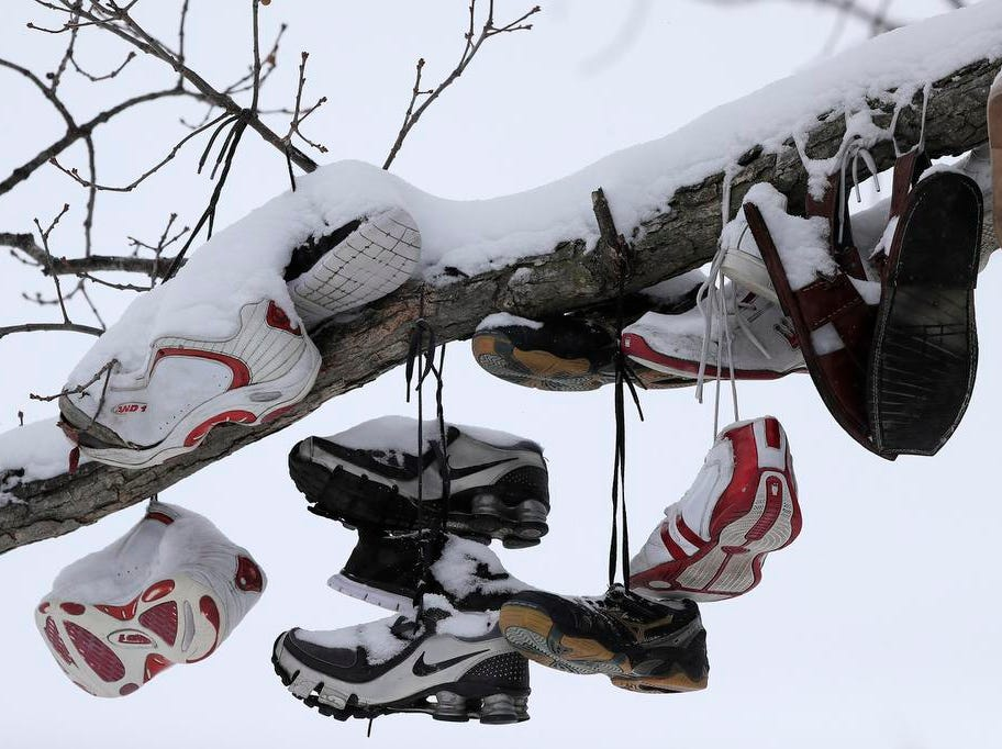 Snow covered shoes hang from a tree on the UW-Green Bay campus on Tuesday, February 12, 2019 in Green Bay, Wis.