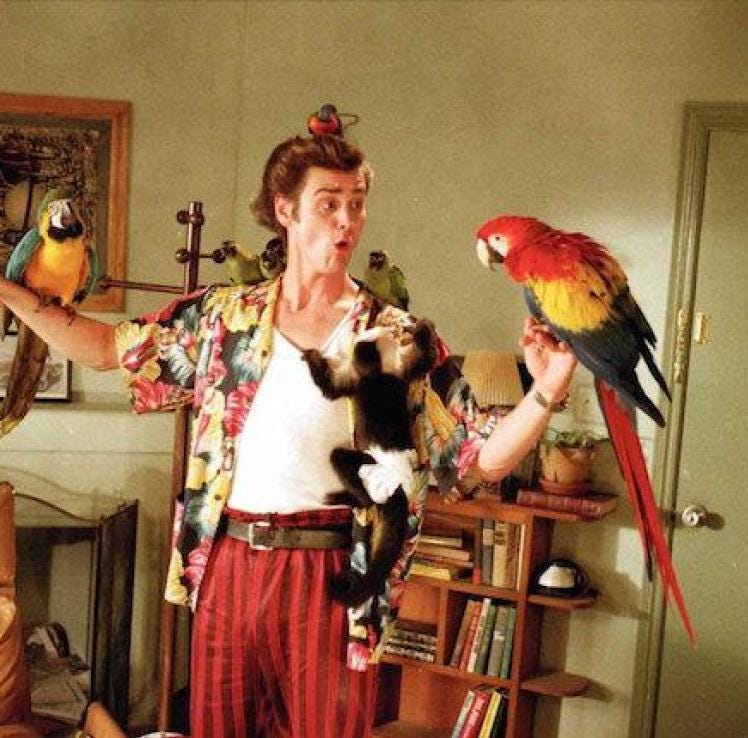 'Ace Ventura' screening with Tom Shadyac canceled