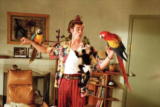 """Jim Carrey and friends make the fur (and feathers) fly in """"Ace Ventura: Pet Detective."""""""