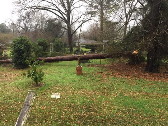 The storm brought trees down in Wetumpka.