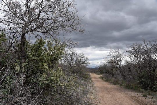 The return leg of the Copper Falls loop passes through mesquite rangeland.