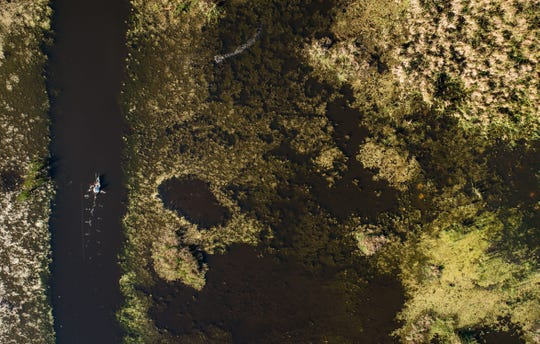 Bob Ringier, of Winter Park, is seen in an aerial photo fishing from his kayak along the northwest bank of Headwaters Lake on Feb. 5, 2019, in Indian River County. Construction on the boat ramp for the lake, which is a St. Johns River Water Management District project, is scheduled to begin Oct. 1 and be complete by February 2020.