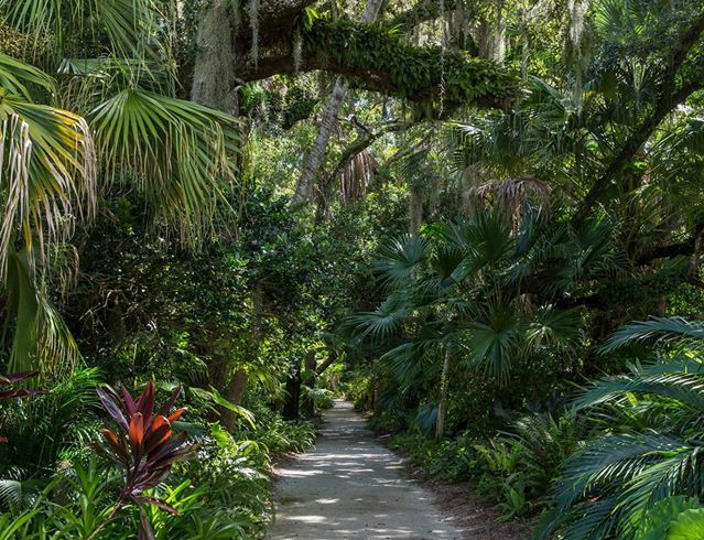 The main trail that leads visitors into the  18-acre McKee Botanical Garden on U.S. 1 in Vero Beach.