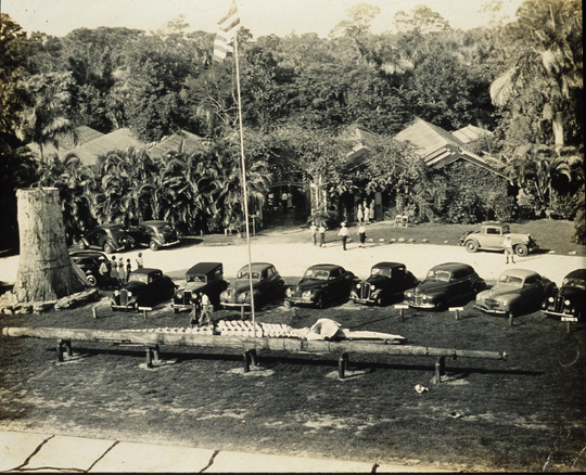 This photograph of McKee Jungle Gardens shows the tree stump and whale skeleton in 1941. When Interstate 95 was built, diverting traffic from U.S. 1, attendance at McKee Jungle Gardens – 100,000 annual visitors at its height – dwindled to the point that it was forced to close in 1976.