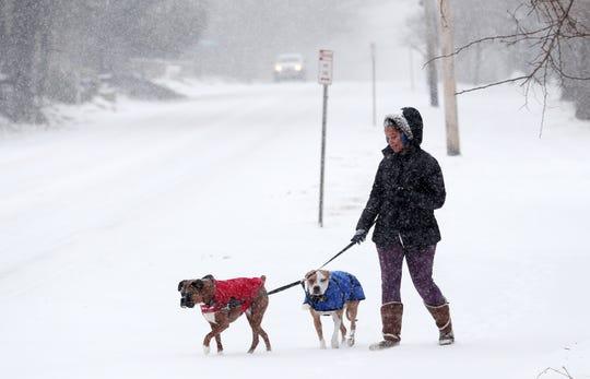 Dog walker Nagyla Badini walks Roxy and Jax along Bedford Road in Bedford Hills during a steady snowfall Feb. 12,  2019.