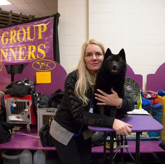 Howell dog ruled ineligible for best in show after making history at Westminster dog show