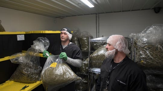 Workers at Green Peak Innovations in Windsor Township show bags of marijuana buds Wednesday, Feb. 13, 2019.