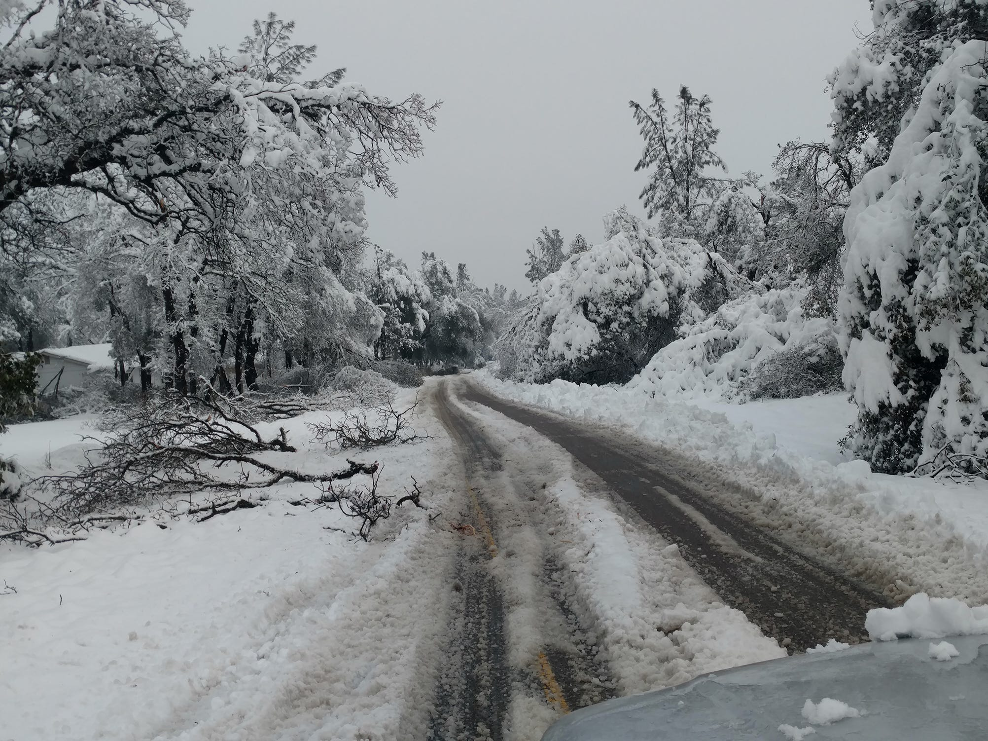Foot of snow lands on the North State