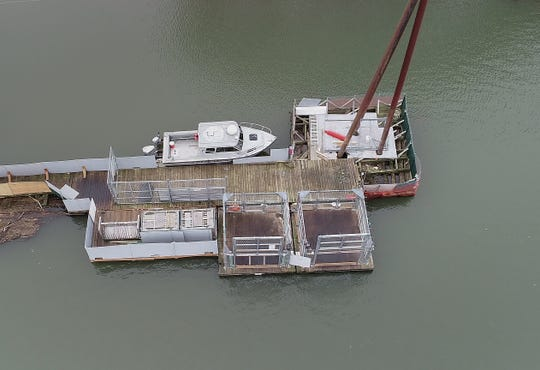 The dock where the Oregon Department of Fish and Wildlife has sea lion traps set up, lower left, is just north of the Willamette Falls, in Oregon City, Oregon.