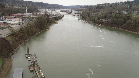 The dock where the Oregon Department of Fish and Wildlife has sea lion traps set up, lower left, is just north of Willamette Falls, in Oregon City, where the sea lions have been consuming steelhead on their way to spawning grounds in the upper Willamette River Basin.
