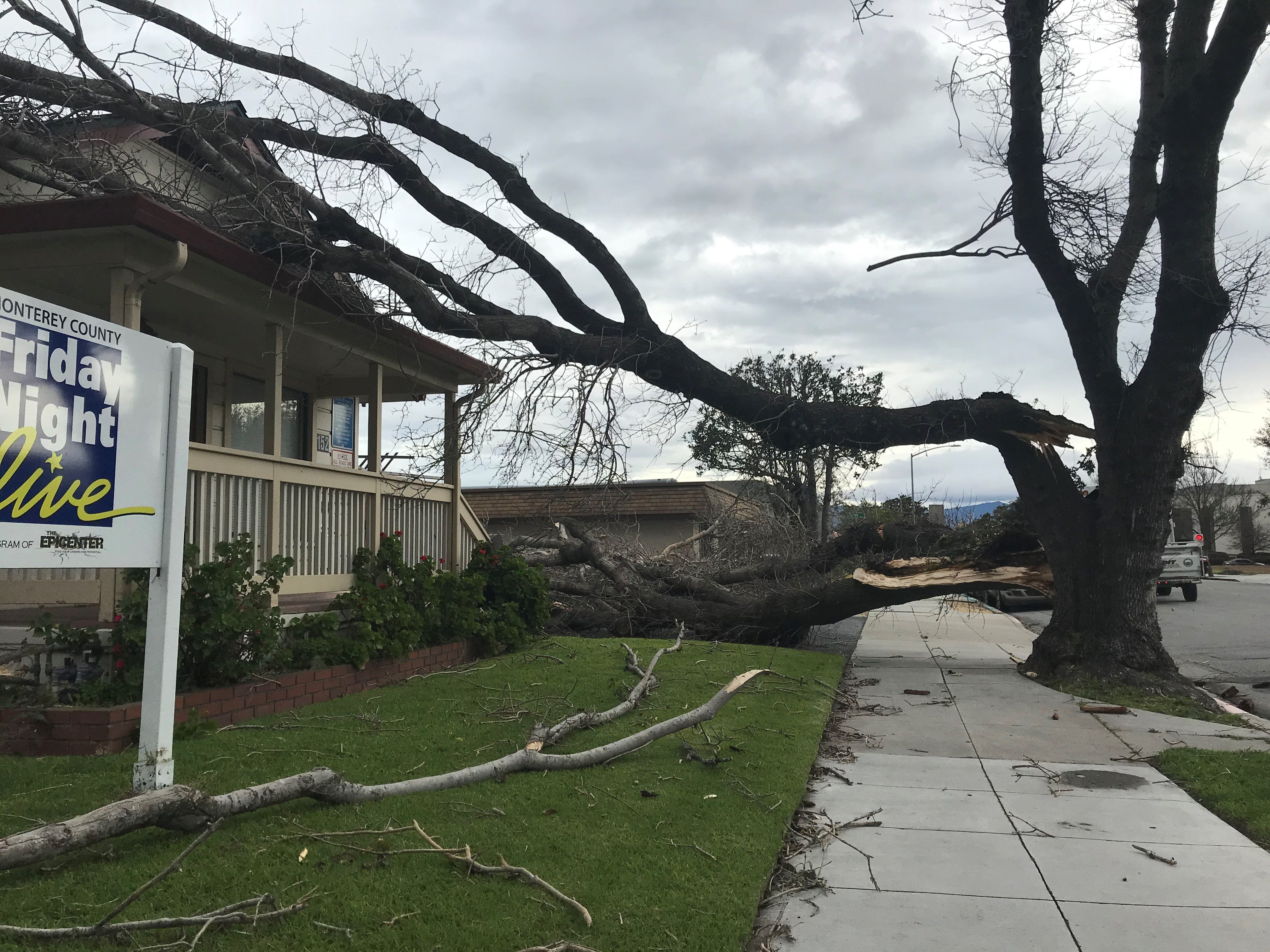 The Sneider house on West Gabilan Street suffered a hit early Wednesday when a tree split and fell on it during the wind storm.