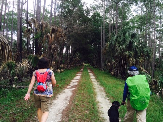 Move walkers will hike at the St. Marks National Wildlife Refuge on Saturday.