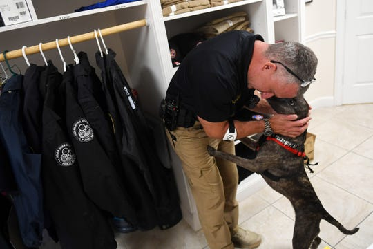 """Indian River Shores Public Safety Lt. Albert Iovino gets a little love from Mattie, a 3-year-old mix, on Wednesday, Feb.13, 2019, at the Public Safety Department. The department has recently entered into a foster partnership with HALO Rescue to raise awareness about adoptable dogs in Indian River County and use them as a resource to reach at-risk residents. """"Chief Rosell for over a year has been saying that he wants to get a dog that we can utilize to get out to the residents to be a therapy dog. We've identified about 40 at-risk elderly residents that either live alone or have health conditions and may not be getting the support they need, so this is kind of like an ice-breaker,"""" said Lt. Mark Shaw. """"We went to HALO in Sebastian with the idea that we wanted to foster a dog and it took off right from the start,"""" Shaw added. """"And it's multifaceted, it's for our guys in the station. They love having them. You've got a stressful call and you come back and you've got a happy little four-legged animal sitting there waiting for you."""" The dogs the department fosters are up for adoption and will be available to meet at the station."""