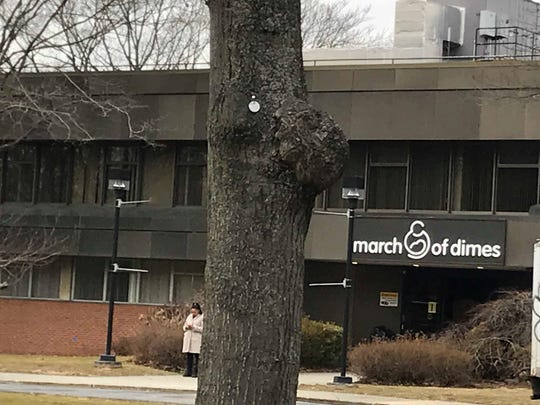 The Windward School may move into the former March of Dimes headquarters in White Plains