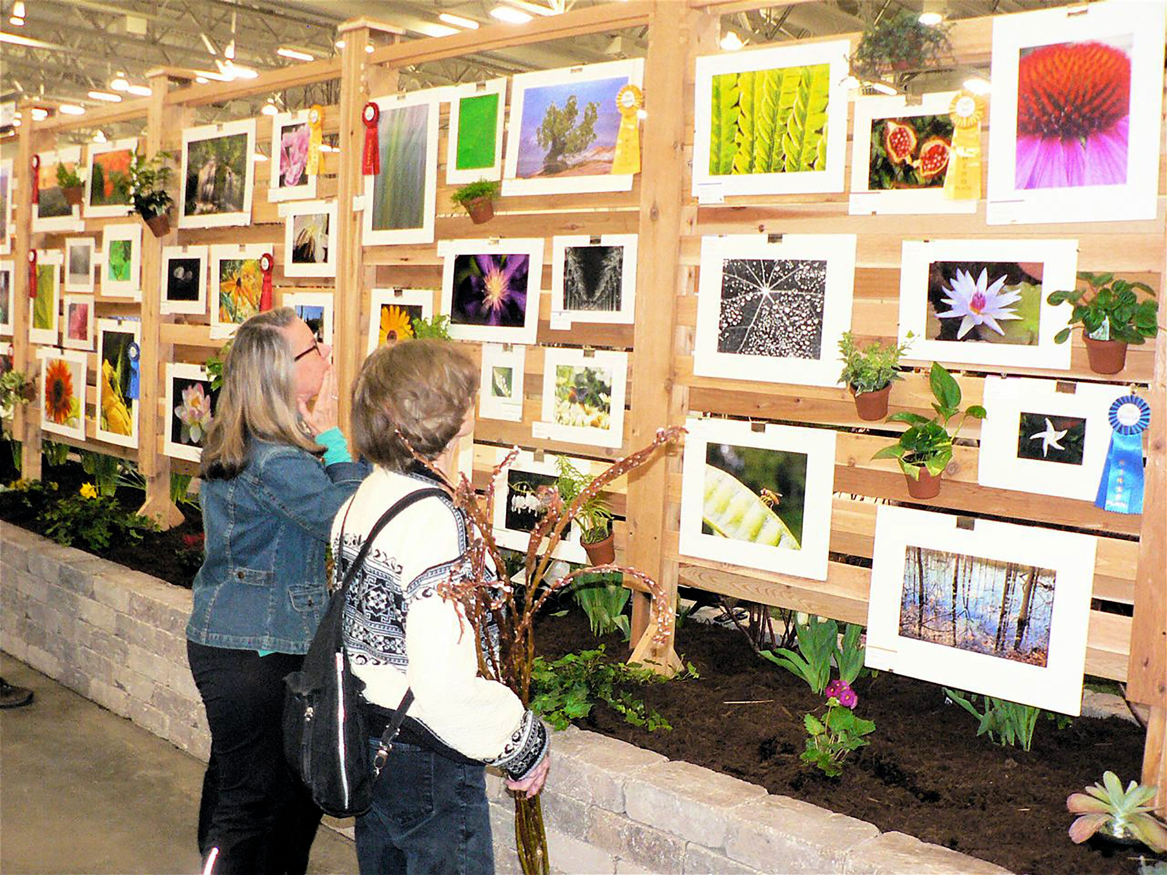 A new feature at the Garden Expo,  a photo contest.