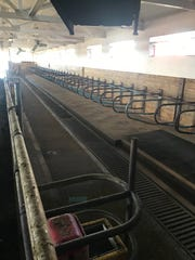 The feed bunk and the free stalls stand empty at Stodola Farms.