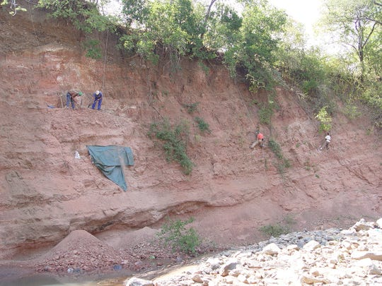 Scientists dig for fossils in the dry Mtuka riverbed in Tanzania.